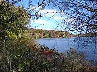 lake-musc.jpg