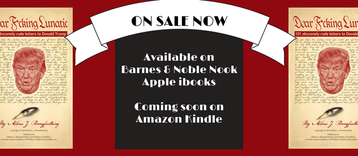 Brand-new e-book 'Dear F*cking Lunatic' now available online
