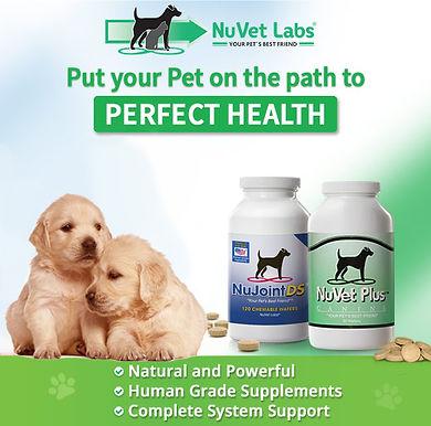 nuvet-labs-pet-supplements-header5-520b.