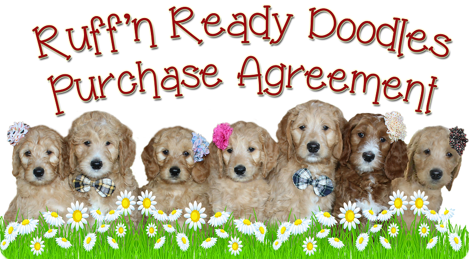 Ruff'n Ready Doodles Purchase Agreement