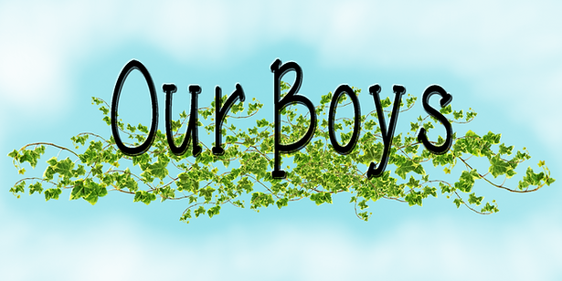 The Boys.png