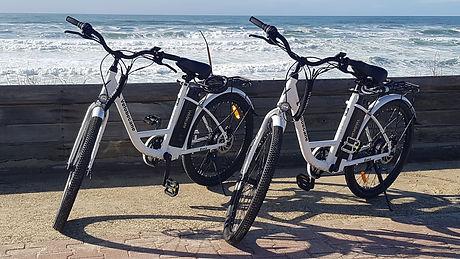 vélo électrique bisca loisirs
