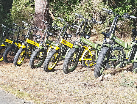 fat bike bisca loisirs