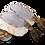 Thumbnail: 越南玻璃虎蝦刺身 | Glass Tiger Shrimp Sashimi | ブラックタイガー