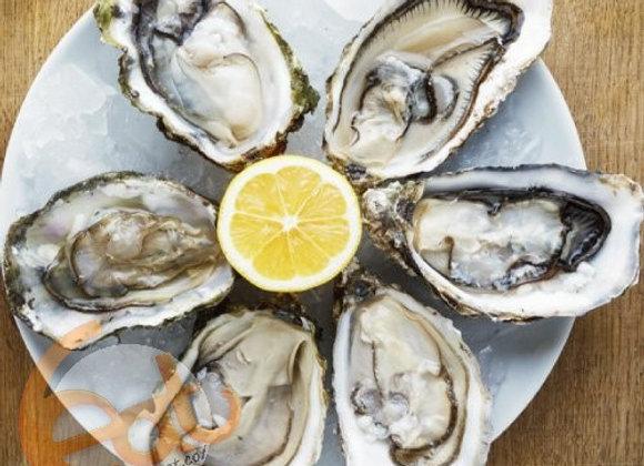 紐西蘭刺身級有機半殼生蠔 | New Zealand Organic Halfshell Sashimi Grade Oyster
