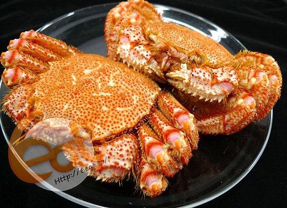 北海道凍熟毛蟹 |  Hokkaido Cooked Hairy Crab