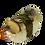 Thumbnail: 蠑螺片刺身 | Sliced Whelk Sashimi | サザエ