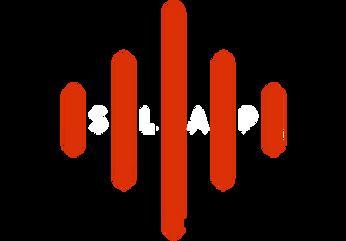 slap-expert-logo-for-conundrum-transparent.png