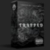 Loopchimp Box - Trapped.png