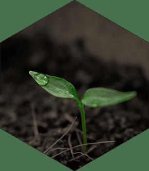 Agriculture Hexagon - Carbonova Fiber Micronutrients