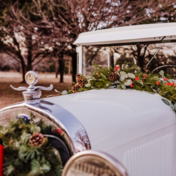 monicacassellphotography-christmasstyled