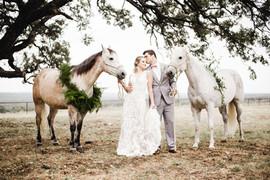 Bridal Couple and Beautiful Horses