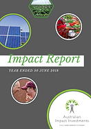 Aii 2018 Impact Report (Link)