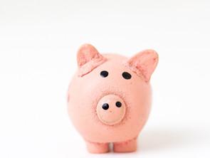 SVA Diversified Impact Fund