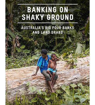 2014-47_australia's_big_4_banks_and_land