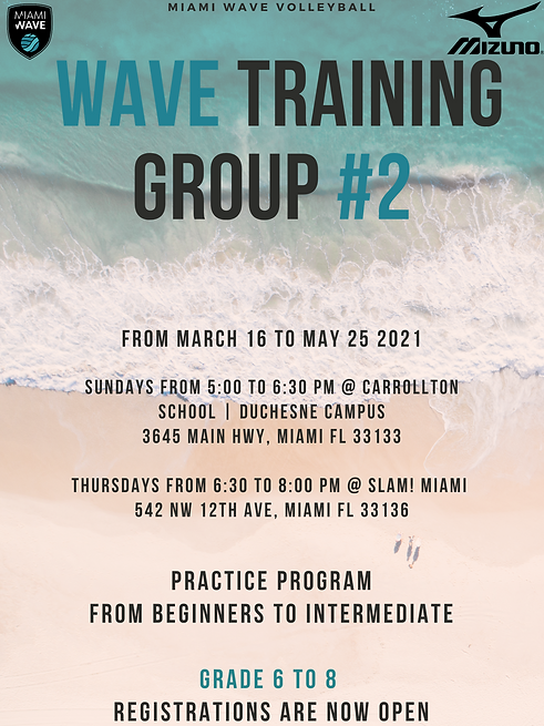 Wave Training Group volleyball.png