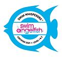 Swim angelfish trained swim coaches