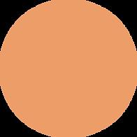 orangeeeeeeeeee-1.png