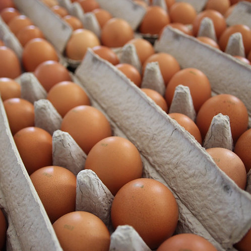 Carton of 12 Large Eggs (800g)