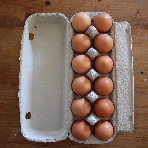 Carton of 12 Eggs (700g)