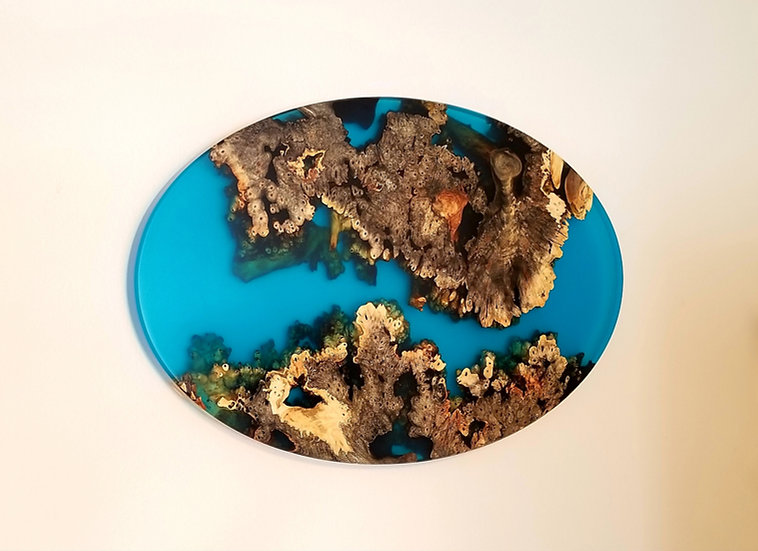 Buckeye Burl and blue epoxy oval wall mount