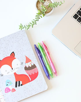 Fox Notebook and Pens