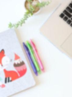 Fox Notebook e penne