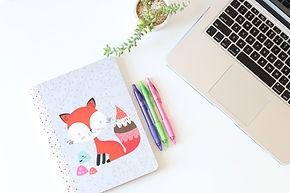 Fox Блокнот и ручки