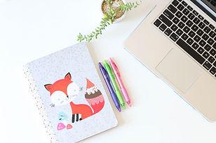 Fox ordinateur portable et stylos