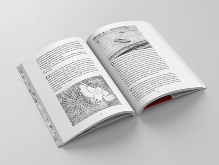 Book by Halla Birgisdóttir