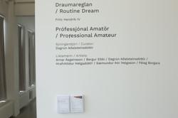 Professional Amateur, 2018