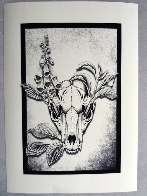 Fox Skull Print -  Black and white A3 or A4