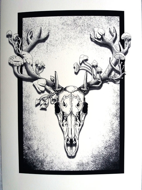 Deer Skull Print -  Black and white A3 or A4