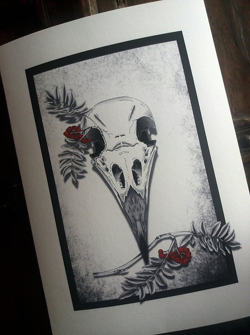 Crow Skull Print -  Black and white A3 or A4