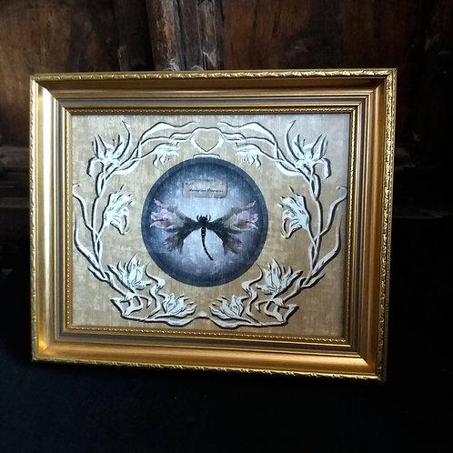 Framed Velvet Print - Lily Moth