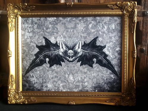 Framed Velvet Print - Mr. bat