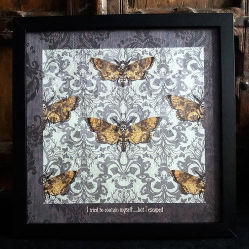 Flight of Fancy -  Framed Wallpaper Print