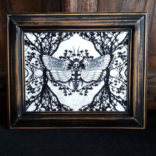 Framed Velvet fabric print - Ghost Moth - white