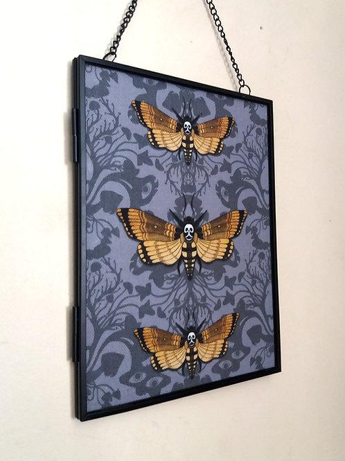 Framed Linen fabric Art print - Deaths Head Hawk Moth - grey