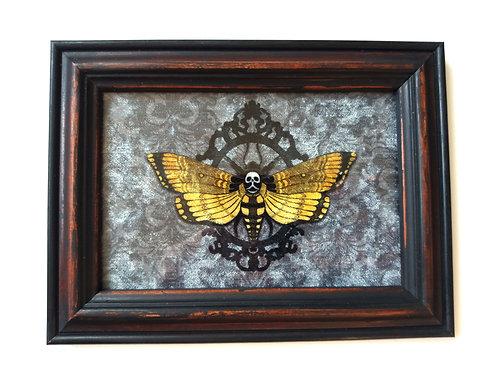 Framed Velvet fabric print - Deaths Head Hawkmoth -grey