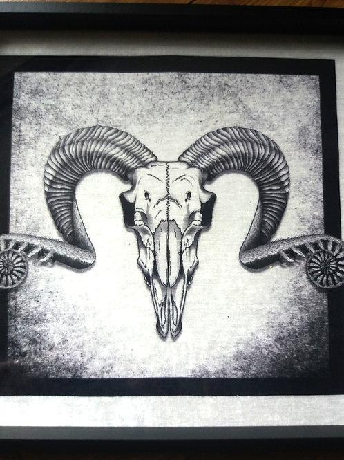 Framed Velvet Art Print - Ram Skull B&W
