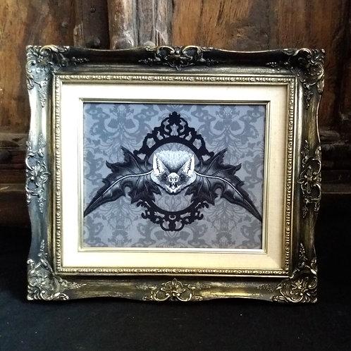 Framed Velvet Print - Mr. bat