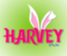 SWT_Harvey_Logo_12x10_300_AT.jpg