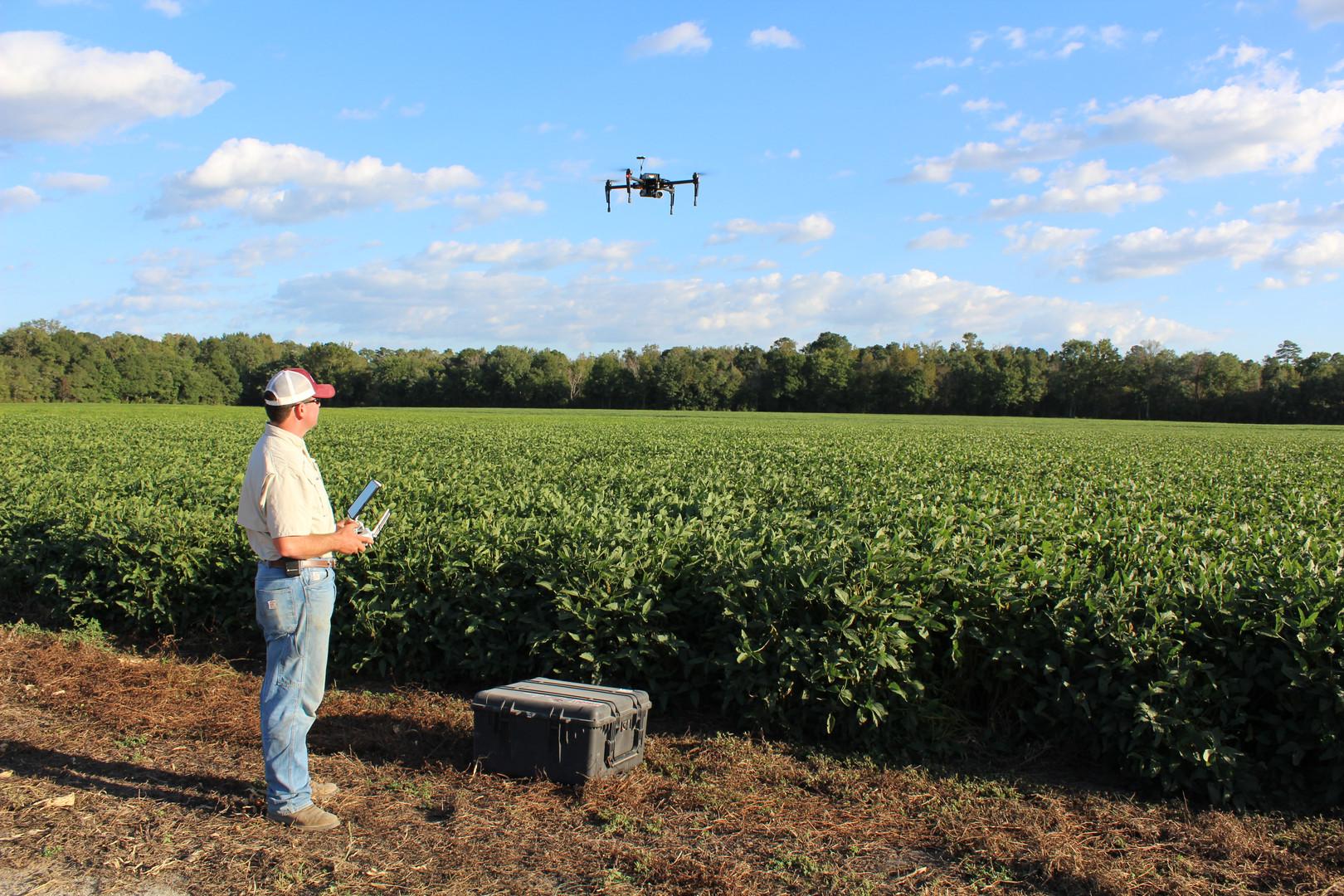 Drone Soybeans.JPG