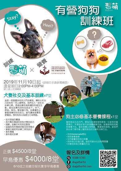 Training course leaflet_20190913-01.jpg