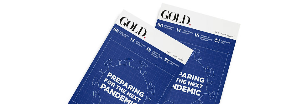 2 GOLD 16 Magazine Banner Template 1584 x 396.jpg