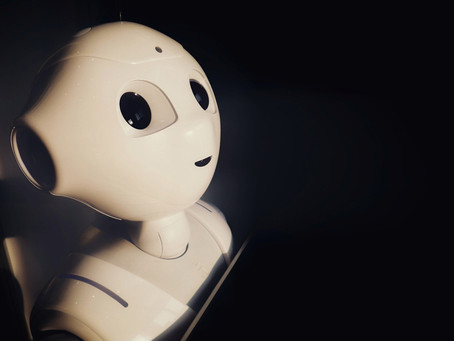 Harnessing AI for Marketing ROI