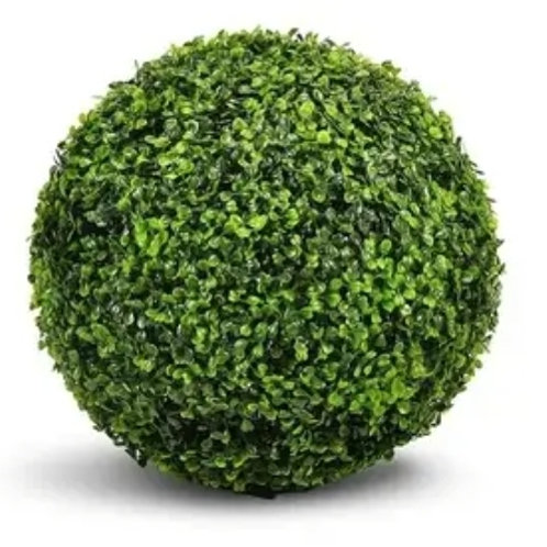 Boxwood Ball Plant Topiary