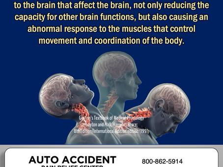 Brain-Body Connection