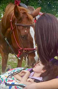 horse therapy.png